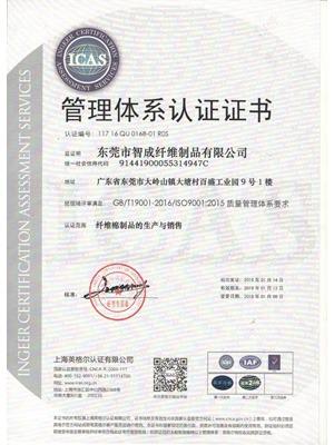 鼎点2015版ISO质量认证证书