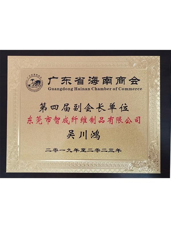 鼎点总经理广东省海南商会第四届副会长单位
